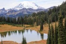 Mt Rainier WA-1177